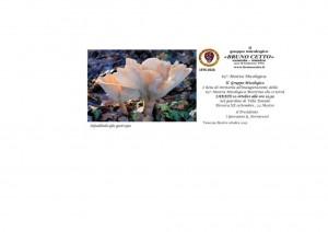 gruppo micologico-page-001